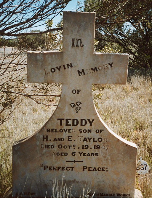 Beloved Teddy – grave tales