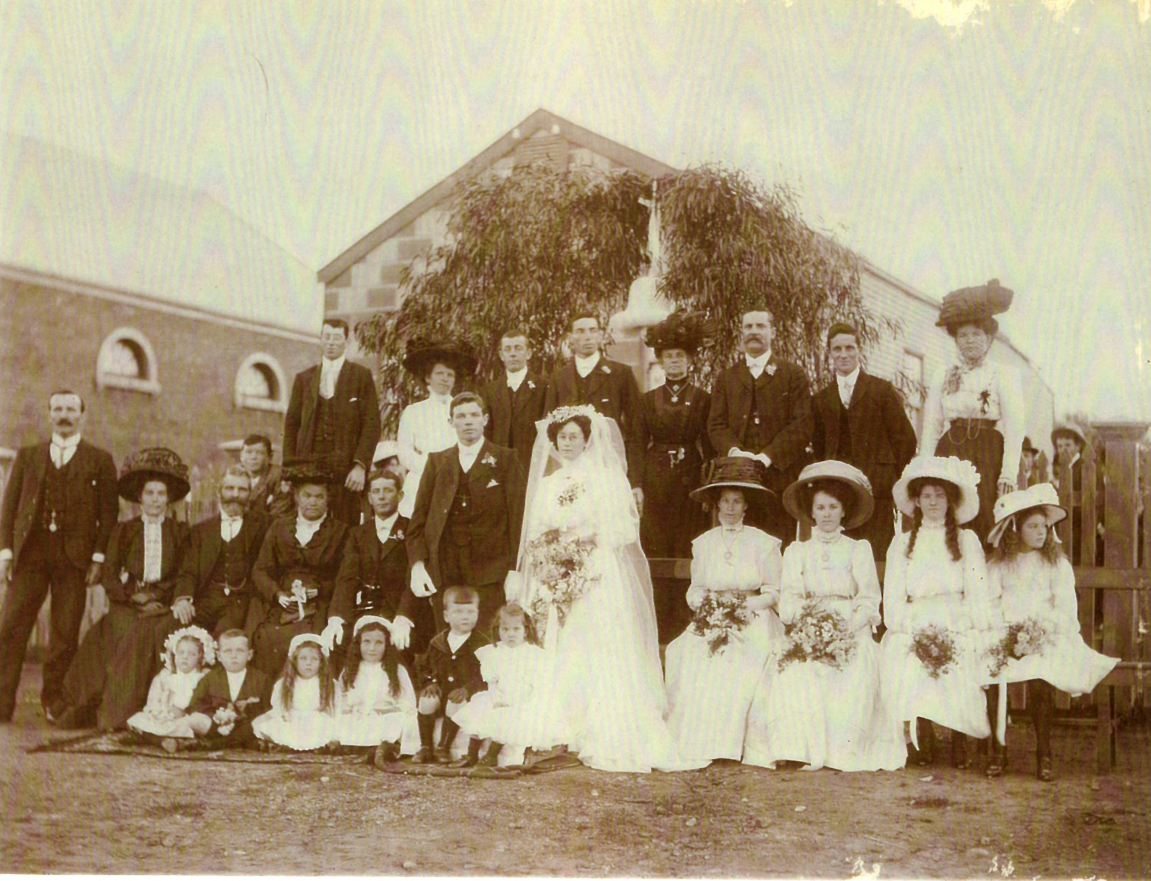 Finding the Lihou Family