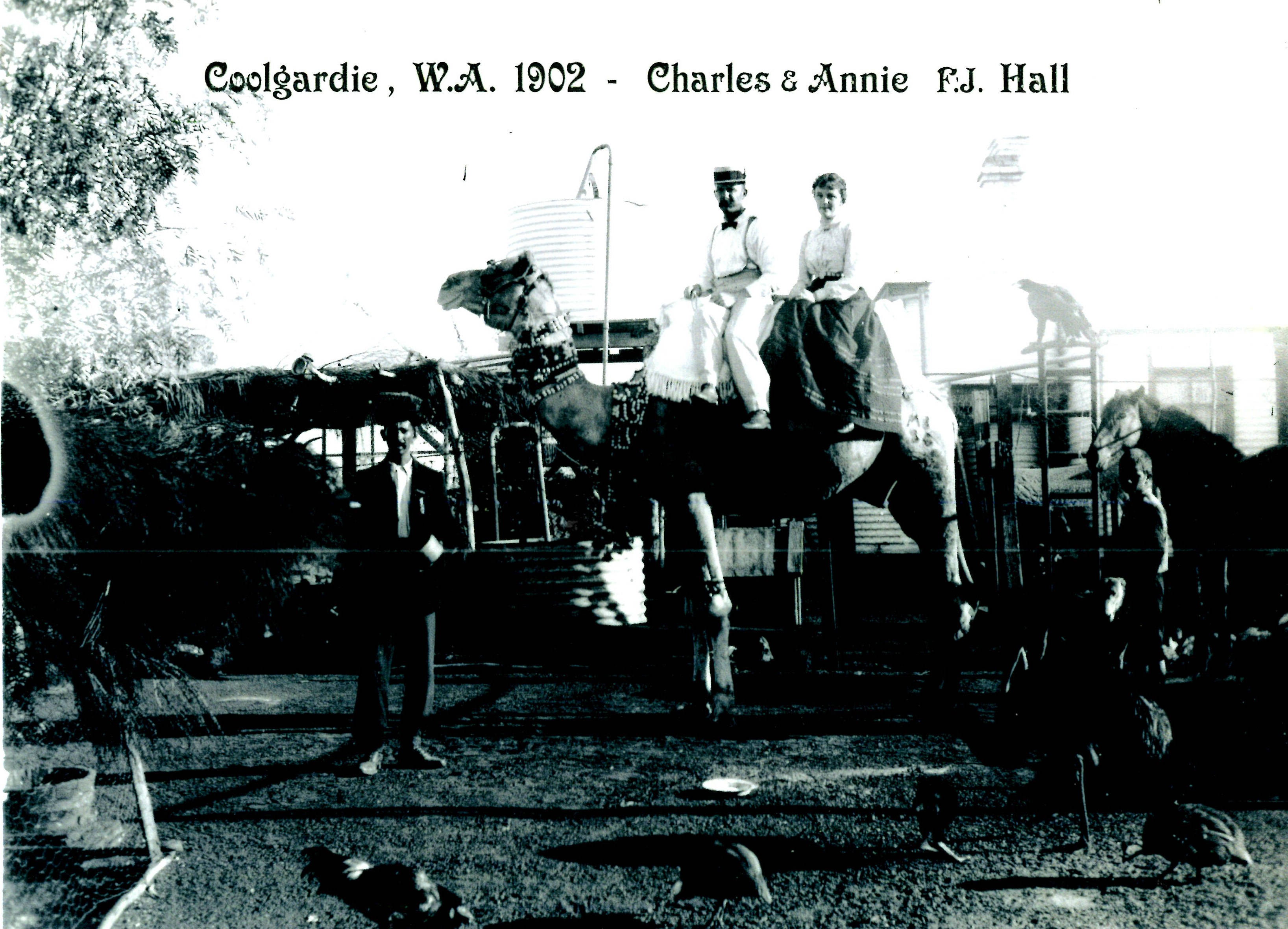 Coolgardie – The Hall Family,early days