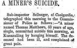 Daily News (Perth, WA : 1882 - 1950), Wednesday 27 March 1901, page 3